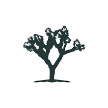Logo Design Joshua Tree Icon Vector
