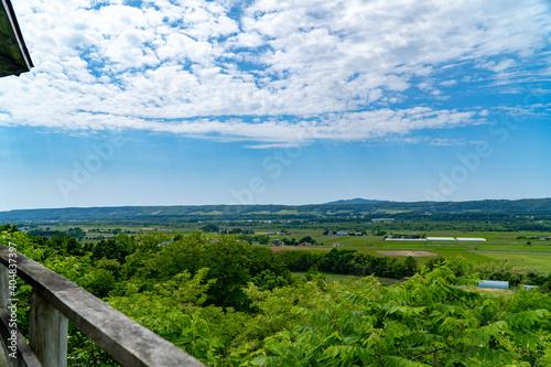 Obraz na plátně 北海道の風景