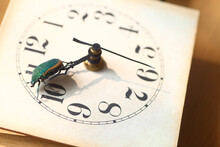 Vintage Clock Face With Green Beetle