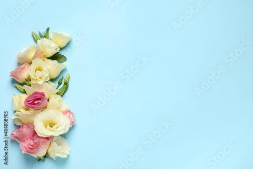 Fotografie, Obraz Beautiful Eustoma flowers on light blue background, flat lay