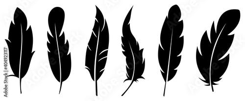 Fotografie, Obraz Silhouette feather icon set