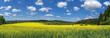 Leinwandbild Motiv Scenic View Of Field Against Sky