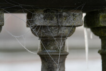 Frozen Cobweb Against A Stone Balustrade On A Winters Morning