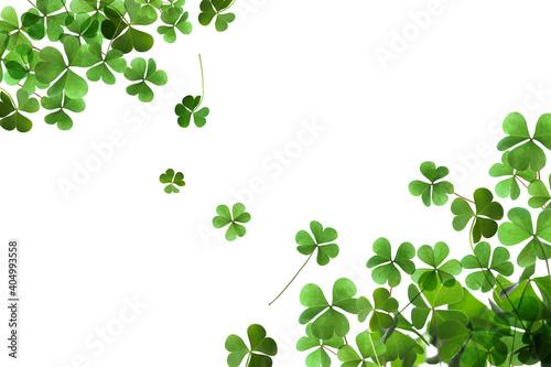 Fresh green clover leaves on white background. St. Patrick's Day Fototapeta