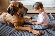 Disabled Boy With Dog Sitting On Carpet At Home
