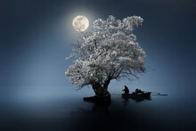 Fishing At Night Under The Moon