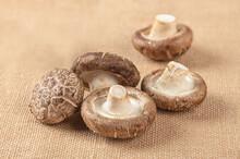 Fresh Shitake Mushroom On Table Background.
