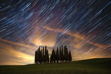 Time-lapse Of Stars In Sky Above Cluster Of Pine Trees On Green Grass Field During Nighttime