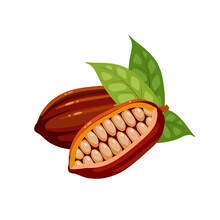 Cocoa Fruit With Beans Inside. Vector Illustration Cartoon Flat Icon Isolated On White Background.
