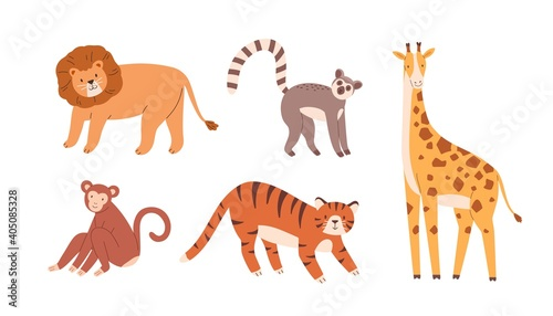Fototapeta premium Set of cute zoo or wild animals. Lion, sloth, giraffe, monkey and tiger. Collection of terrestrial mammals isolated on white background. Exotic fauna. Childish colored flat vector illustration