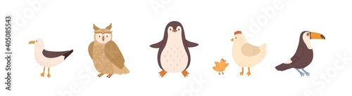 Fototapeta premium Set of front and side views of cute birds. Gull, owl, penguin, chicken, hen and toucan isolated on white background. Colored flat vector illustration