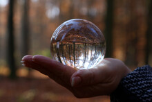 Close-up Of Hand Holding Crystal Ball In Forest During Autumn
