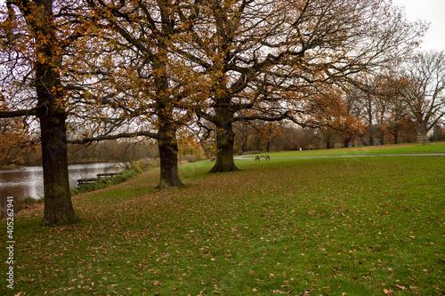 Obraz na plátně Autumn in Park Markeaton in England