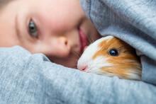 Boy Holding A Guinea Pig. A Child Hugs A Guinea Pig. Pet Care Concept