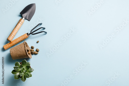 Gardening tools on blue background Fototapet