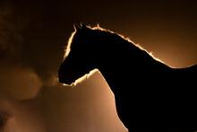 Horse Silhouette On Orange Smokey Back Ground