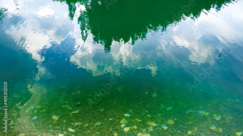 Obraz High pine tree forest reflecting in emerald clear water of mountain lake or river - fototapety do salonu