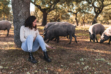 Woman Showing Acorn To Iberian Pig Grazing In Background At Farm