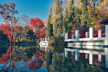 Russia, Krasnodar Krai, Sochi, Trees Reflecting On Surface Of Shiny Pond In Autumn Park