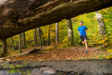 Sportsman Trail Running In Autumn Forest At Kappelberg, Germany