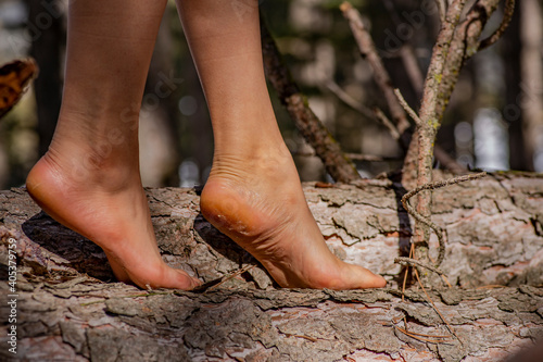 Fotografie, Obraz The woman barefoot on tipped log.