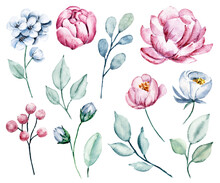 Set Flowers And Leaf, Pink And Blue Vintage Watercolor Drawing. Isolated On White Background.