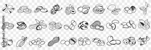 Fototapeta Various edible nut doodle set. Collection of hand drawn hazel, almond, pistachio, peanuts, cashew nuts and macadamia in shell for eating isolated on transparent background. Illustration of tasty snack obraz