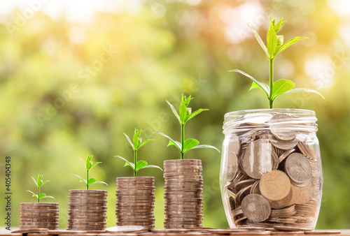 Conceptual shot of seedlings growing on piles of coins - business growing succes Fotobehang