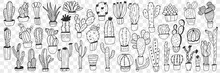 Cactus In Pots Doodle Set. Collection Of Hand Drawn Various Cactus Plants In Pots For Home Growing Isolated On Transparent Background. Illustration Of Exotic Mexican Plants For Care At Home