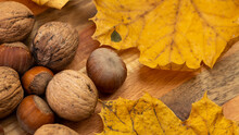 A Composition Of Walnuts And Hazelnuts With Golden Maple Leaves