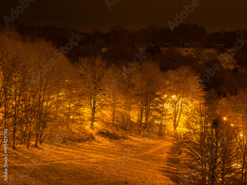 Fototapety, obrazy: Snowy meadow and trees at night, illuminated by orange-yellow light from street lamps