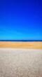 Leinwandbild Motiv Scenic View Of Beach Against Clear Blue Sky