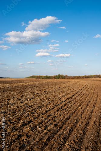 Obraz na plátně plowed field spring