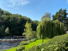View Of The, River Nidd, As It Flows Through, Knaresborough, Yorkshire, UK