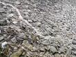 Aufgeschüttete Steine mit Beton am Deich an der Einfahrt in den Hafen von Neuharlingersiel bei Esens an der Küste der Nordsee in Ostfriesland in Niedersachsen