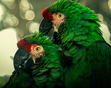 Portrait Of Two Great Green Macaws Under The Lights Against A Blurred Background With Bokeh Light