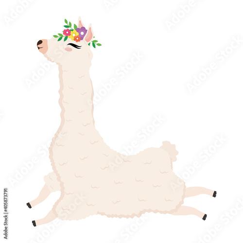 Fototapeta premium cute alpaca exotic with flowers decoration in head vector illustration design