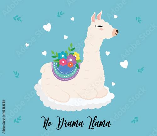 Fototapeta premium cute alpaca exotic animal with floral decoration and lettering vector illustration design