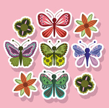 Butterflies Insect Nature Animals In Sticker Style On Pink Background