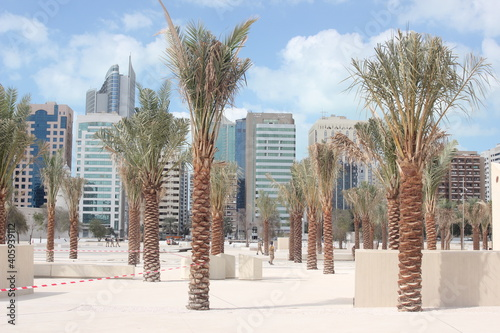 Obraz na plátně palm oasis in Abu Dhabi town