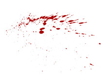 High Angle View Of Bloods On White Background