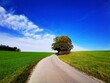 Leinwandbild Motiv Road Amidst Field Against Sky