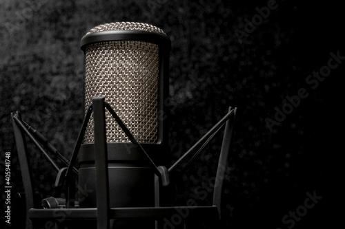 Cuadros en Lienzo Microfono de condensador para musicos y cantantes