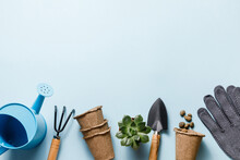 Gardening Tools On Blue Background. Spring Garden Works Concept. World Environment Day, Arbor Day, International Mother Day. Top View. Copy Space