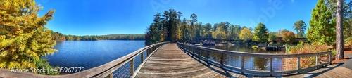 Fototapeta Panoramic View Of Trees By Lake Against Blue Sky