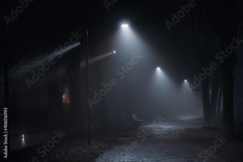 Fotografiet Illuminated Street Lights On Road In City At Night