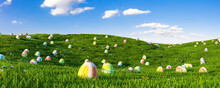 Easter Eggs By Plants Against Sky