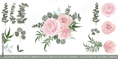 Fotografia Compositions of pink roses, green plants and leaves, eucalyptus