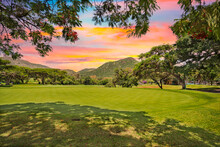 View Of Sun City Golf Course Through The Trees With Twilight Sky