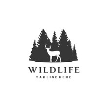 Deer Fir Coniferous Pine Evergreen Forest Tree Wildlife Logo Design
